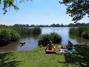 't Nieuwe Diep Amsterdam